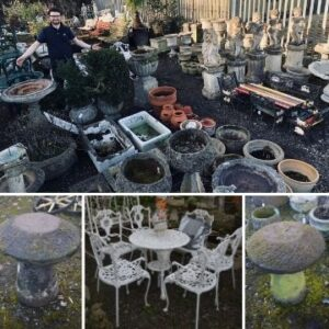 Garden galore! The auction includes external furniture, pots and outdoor items such as staddle stones.